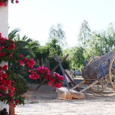 masseria-wedding-italy